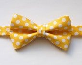 Adjustable Bowtie For Boys, Men or Pets in Yellow & White PolkaDots