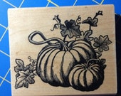 Pumpkins on the Vine  / Graphic Rubber Stamp