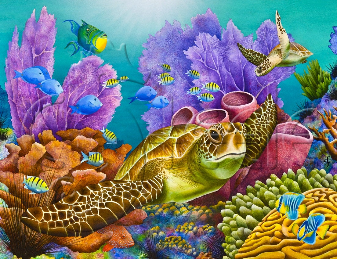 Carolyn Steele tropical art print coral reef and sea turtle