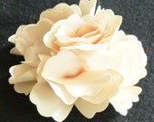 20 Cream Silk Flower Heads for Crafts, Weddings, Centerpieces, Favors and much more