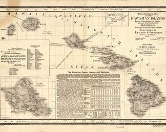 """Hawaiian Islands, 1893, Hawaii, View, Aerial, """"Bird's Eye View"""" -Map Print"""