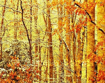 Autumn forest painting: autumn trees art print forest painting fall painting fall leaves 16x24""