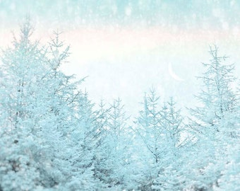 Nature Photography, Forest, Snow, Winter Sky, Snowbow, Fairytale, Blue, Trees.
