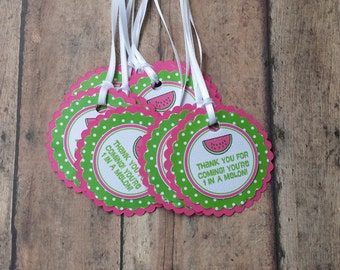 12 Pink and Green Watermelon Favor Tags