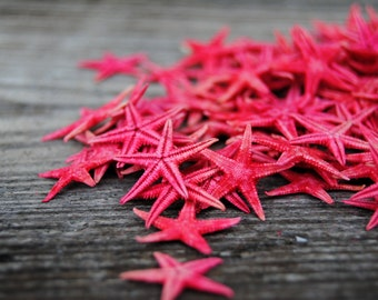 Beach Decor - 50 pc Red Small Starfish - Craft Starfish - Wholesale