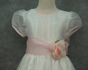 Embroidered Organza Dress Size 6