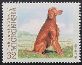 Irish Setter Dog -Handmade Postage Stamp Art 21240AM