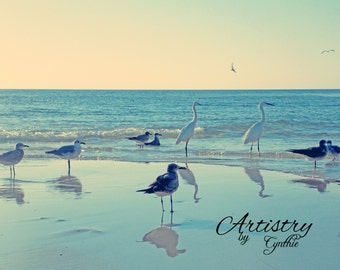 Exotic birds, White birds, Florida birds,Beach birds,Soft pink,  Beach Photography, Landscape, Ocean photography, Coastal Wall Art, Nautical