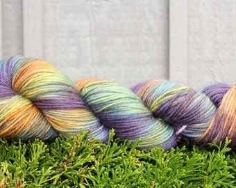 Chameleon - Hand Painted Superwash Merino Yarn