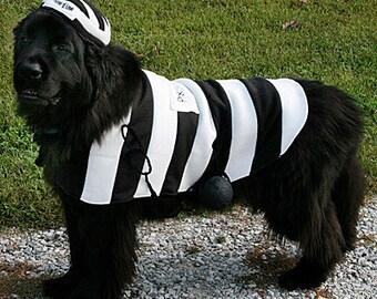 Prisoner of Love Costume