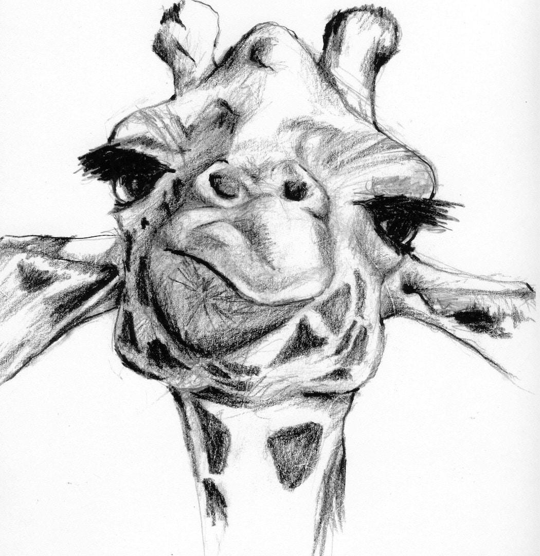 Giraffe by FriendlyFaces415 on EtsyCool Giraffe Drawings