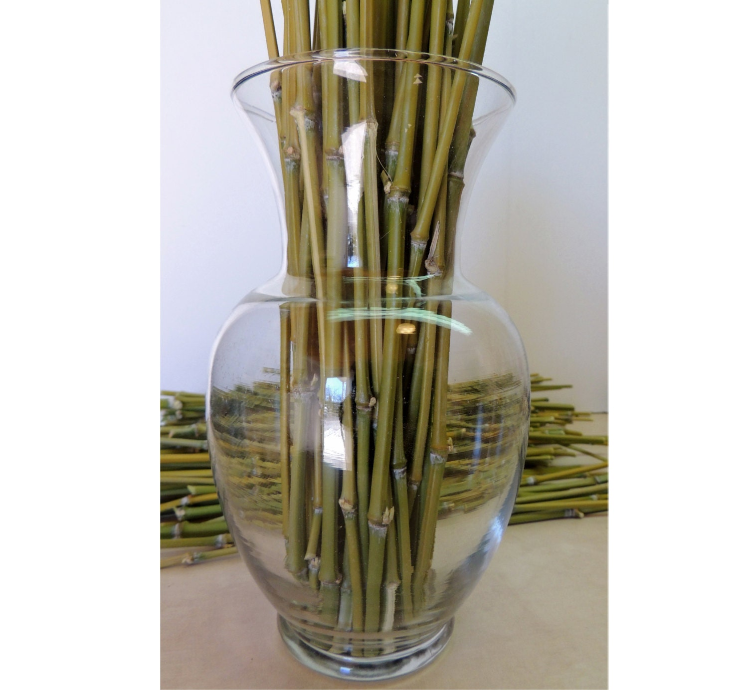 Lot of 24 Real Bamboo Sticks 12 long for Crafting by ...