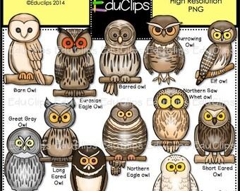 Eurasian eagle owl   Etsy