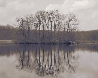 Peaceful Waters , Lake photography, relaxing, Sepia, Brown Wall decor