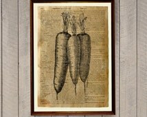 Carrots print Kitchen decor Dictionary page Vegetables poster WA126