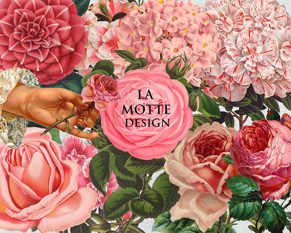 Flower clipart pink flower clip art 10 png of beautiful flower