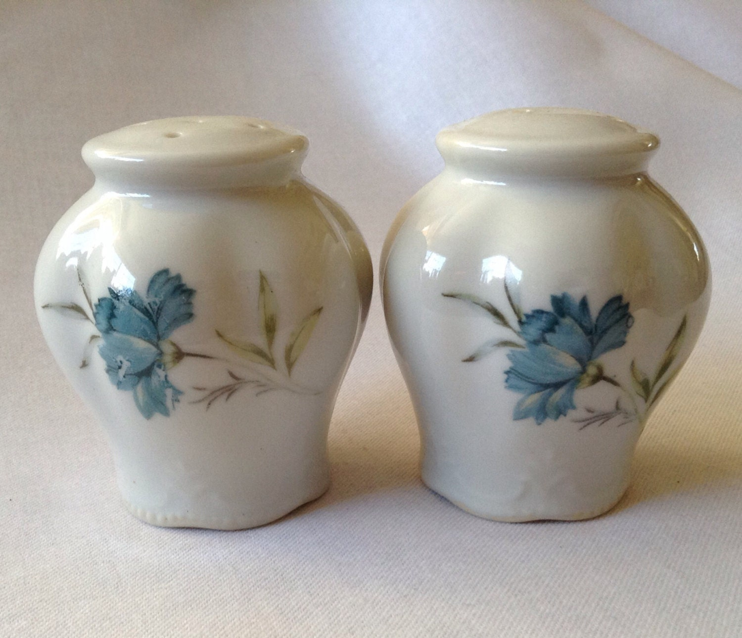 Beautiful Porcelain Salt And Pepper Shakers With Blue Flowers