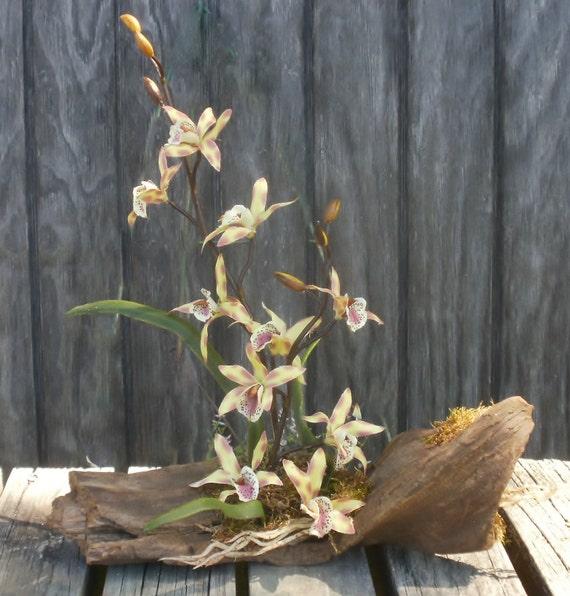 Flower Arrangement Using Driftwood: Orchids Driftwood Bar Floral Arrangement Moss By MeMaandCo