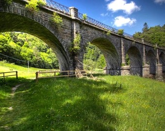 Neidpath Viaduct, original fine art photography, print, landscape, peebles, field, scotland, train, woods, nature, bridge, transportation