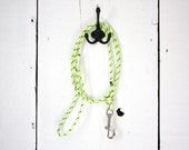 Dog Leash (5 Foot): Glow In The Dark Safety Leash for Small to Medium Dogs