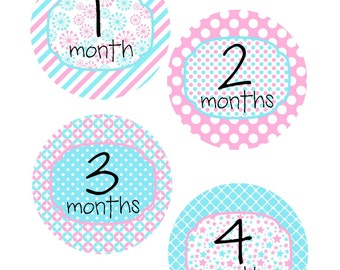 Monthly Stickers, Milestone Stickers, Baby Month Stickers, , Monthly Baby Sticker, Baby Shower Gifts, Baby Month Sticker Girl, G04