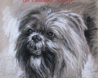 Custom Dog Portraits Drawn From Your Photo
