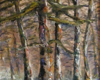 Trees, oil painting of trees, textured oil painting of woodland, Woodland painting, Woodland oil on canvas framed, Springtime woodland