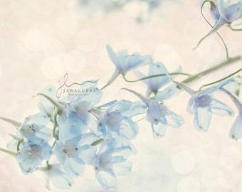 Dreamy Blue Flowers