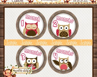 Girl Owls Pink & Brown Monthly Baby Milestone Stickers Baby Girl One-Piece Baby Stickers Monthly Baby Stickers Baby Month Stickers  {M159}