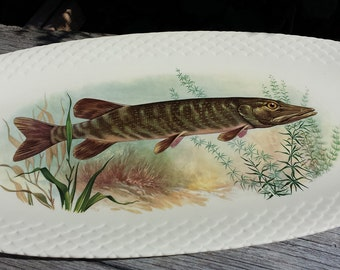 Great fish dish. Motif Pike. G. Brachet Terrasson.Limoges. French vintage