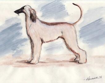 Afghan Hound Print