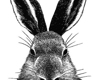 Rabbit wood engraving