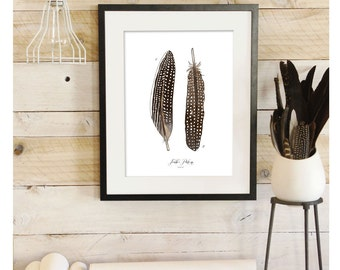 Feather Patterns - Scientific Illustration. Beautifully textured cotton canvas art print. Order as an 8x10 11x14 or 16x20 size. Vol.4