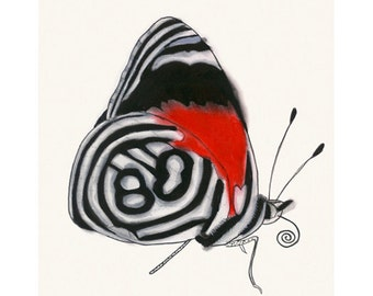 "Butterfly wall art print : Anna's Eighty-eight butterfly 8.3"" X 11.7"" print - 4 for 3 SALE"