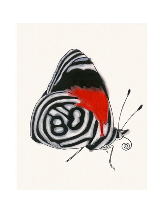 """Butterfly wall art print : Anna's Eighty-eight butterfly 8.3"""" X 11.7"""" print - 4 for 3 SALE"""