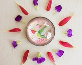 Large Magnet - Hummingbird Magnet | Katie Daisy | iPop | refrigerator magnet