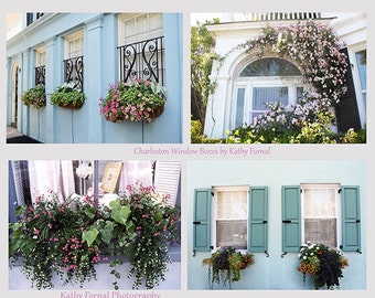 Charleston Window Boxes Set of 4, Charleston Flower Boxes, Charleston French Quarter Architecture, Charleston South Carolina Photo Cards