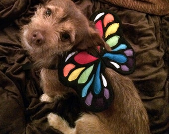 Dog Costume Wings. 3 sizes. Rainbow Butterfly. Black Base. Photo Prop.