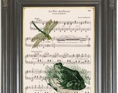 Dragonfly print on dictionary or music page Green frog COUPON SALE Dictionary art print Wall decor Sheet music Digital art print No. 421