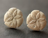 Sanddollar Earrings. Sand Dollar Earrings. Silver Post Earrings. Beach Earrings. Seashell Earrings. Stud Earrings. Handmade Jewelry.