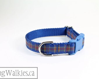 """MacBeth Tartan // 3/4"""" (19mm) Wide // Blue and Red Tartan // Choice of Style and Size // Martingale or Quick Side Release"""