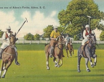 On an Aiken Field - Vintage 1930s Tichnor Tinted Linen Polo Game View Postcard