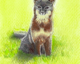 """Mama Fox art print of an original drawing available 5x7"""" or 8x10"""""""