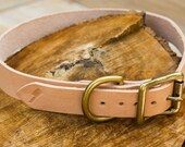 Classic Leather Dog Collar Brass Roller Buckle