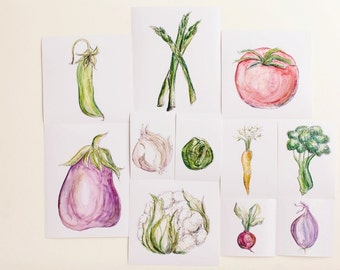 Set of 11 Vegetable Prints