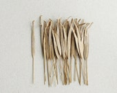 100 Brown Paper Grass Leaves with Wire Stems - Ideal for cardmaking, scrapbooking & boutonniere