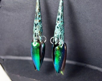FREE SHIPPING  Elytra Beetle Wing Earrings
