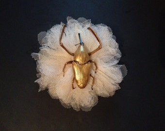 Beautiful golden Beetle corsage brooch pin entomology