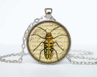 Bug necklace Insect necklace bug pendant Victorian England jewelry beige black brown