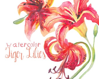 Tiger Lily Watercolor Floral Clipart INSTANT Download Digital Clip Art Flower Clipart Flowers Watercolors Commercial Use Floral Clip Art